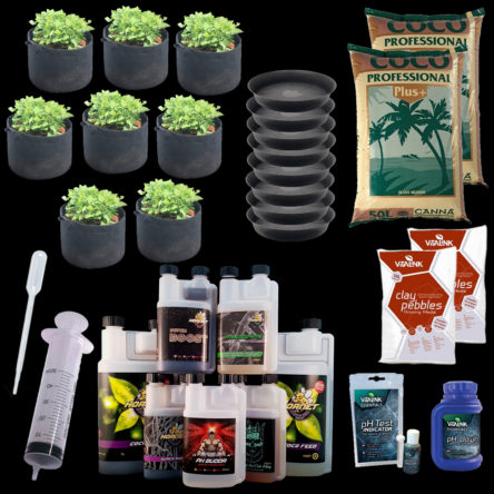 Hornet 8 Pot Coco Bundle